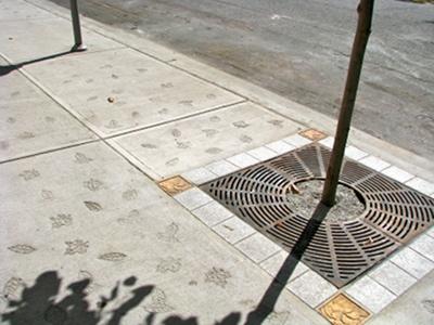 Liście wyryte w betonowym chodniku